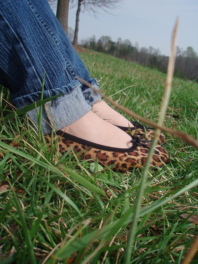 [crouching leopard, hidden shoes]