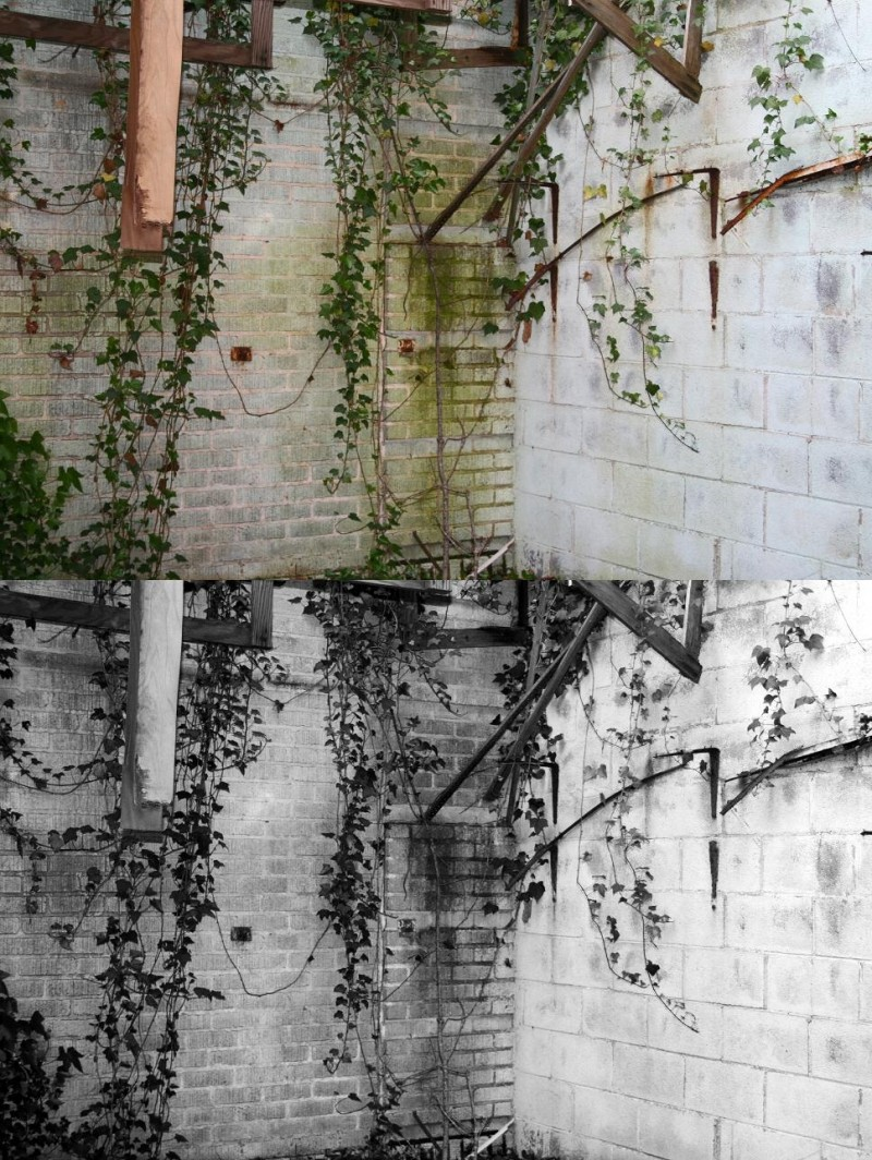 Images of Statesville; Old Hospital Rotted Wall.