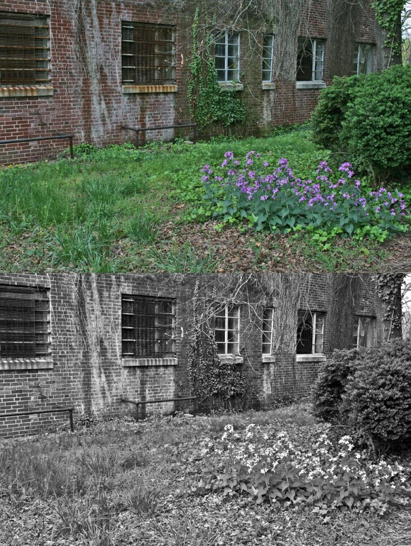 Images of Statesville; Old Hospital, New Life.