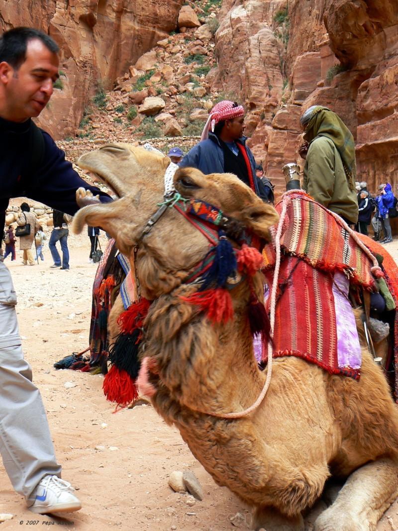 pepaleon pepaaston jordania jordan petra