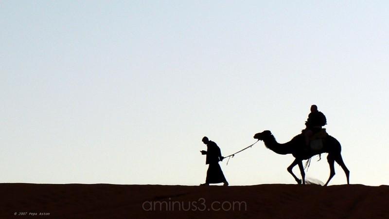 pepaaston jordania jordan wadirum