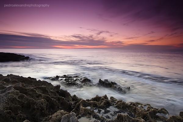 coastal dream