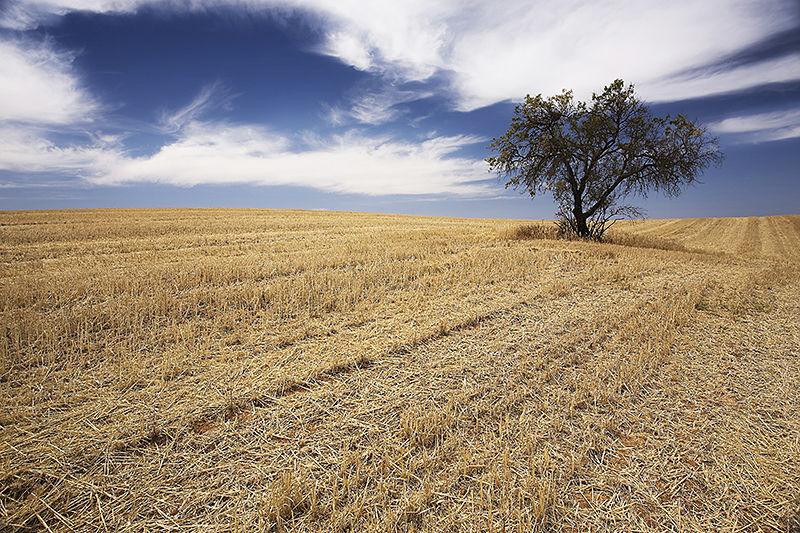 dry land alentejo