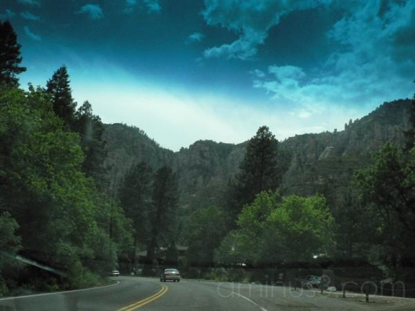 Skies, rocks and trees