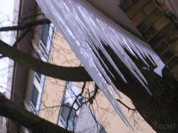 Daggers of Ice
