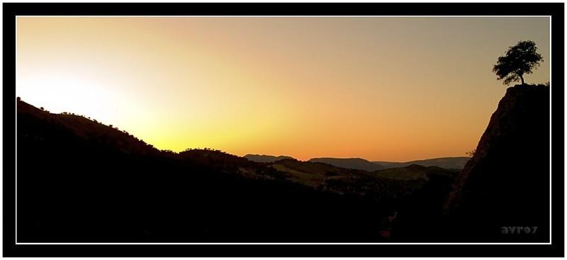 El crepúsculo  /  The dusk