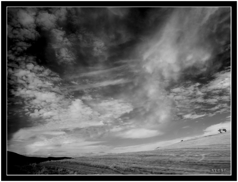 Cielo negro   /   Black sky
