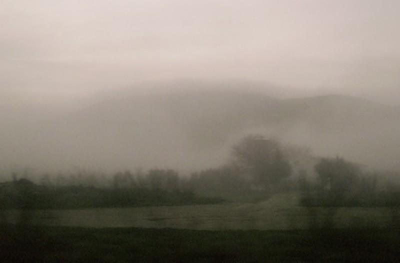 [Niebla]   /   [Fog]
