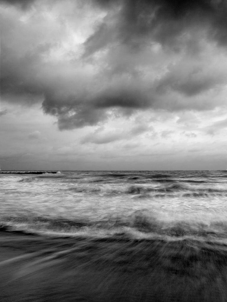 El movimiento de las olas  / The movement of waves