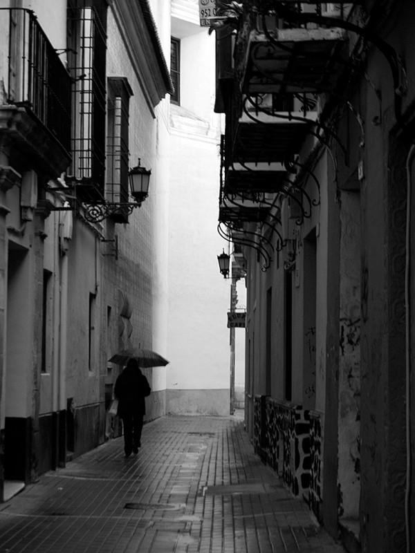 Bajo la lluvia   /   Under the rain