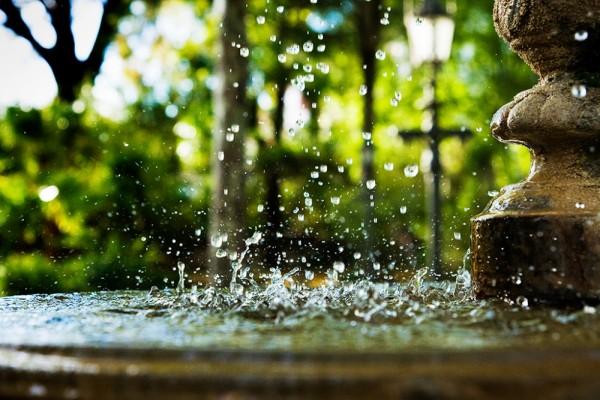 La Fuente   /   The Fountain