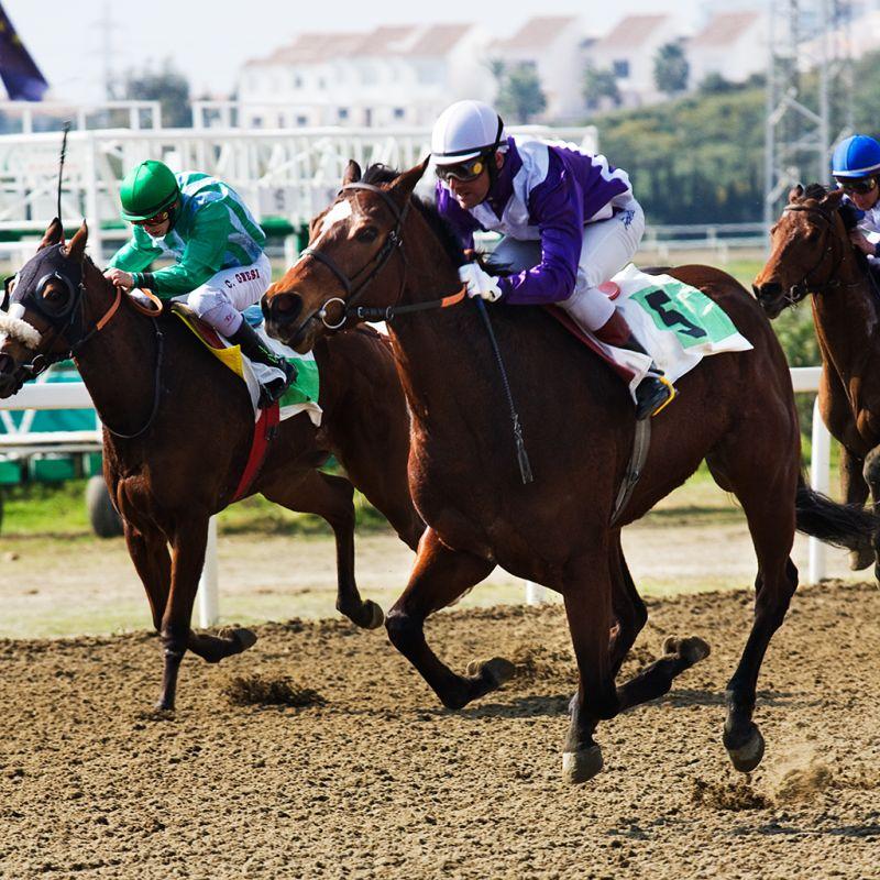 Horse Racing (I)
