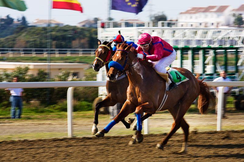 Horse Racing (III)