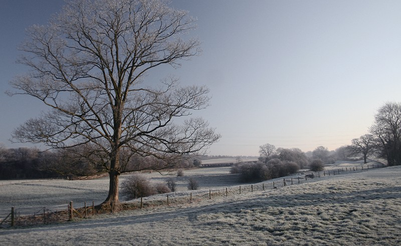 cold and frosty morning