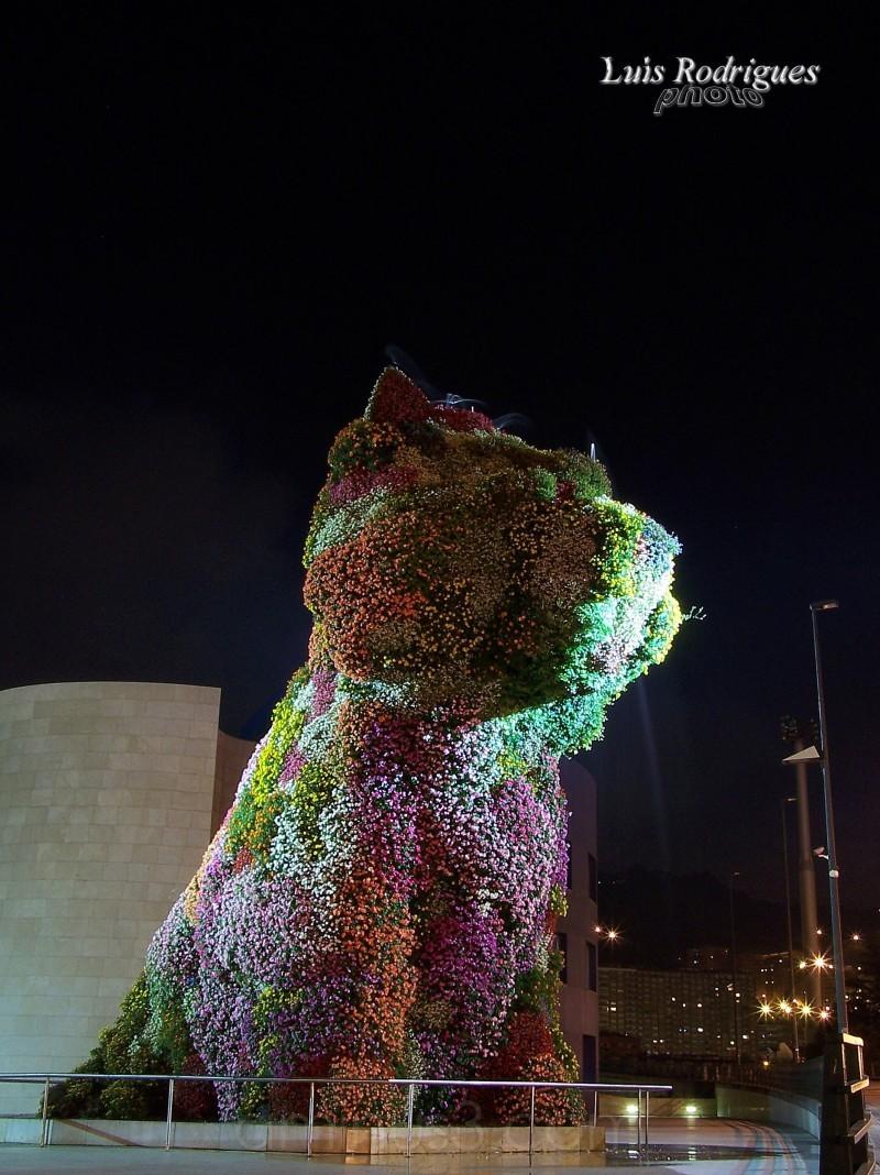 Bilbao Dog