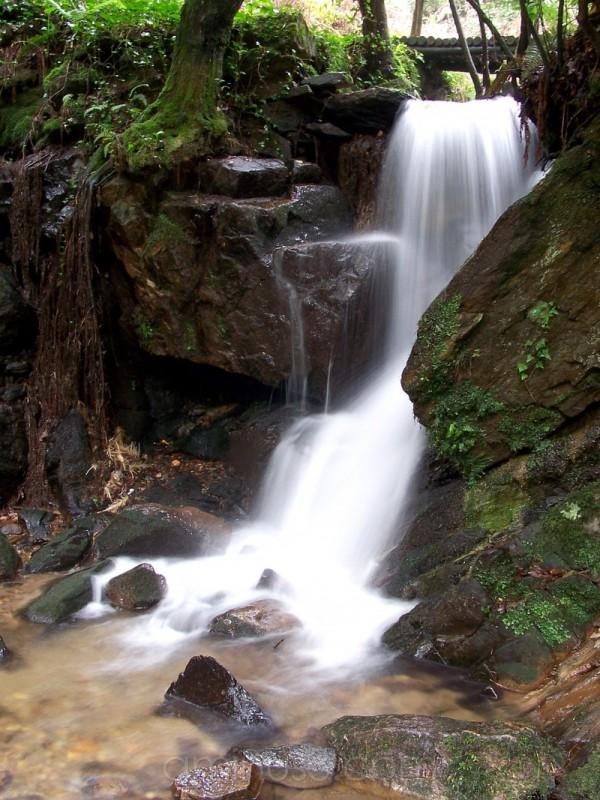 Serra da Cabreia