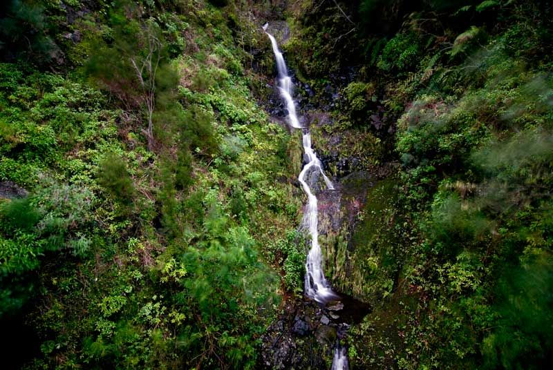madeira, portugal, Island, ilha, waterfall