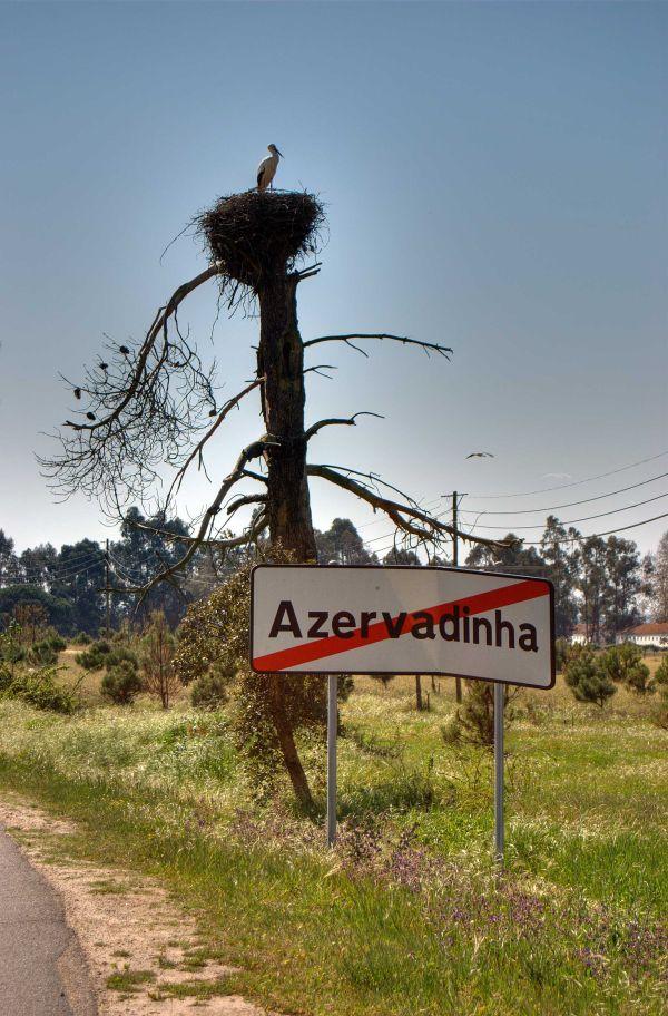 Storke,portugal,village