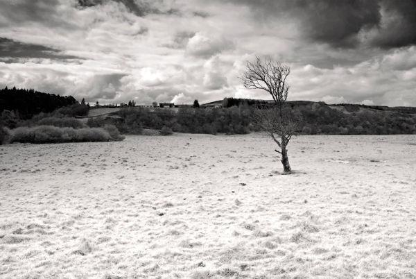 Scotland Highlands North Fields