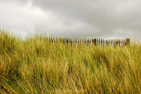 Juno Beach Normandy France