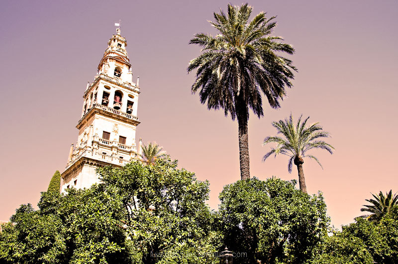Cordoba Cathedral Tower Spain
