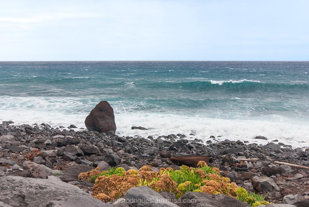 Ocean Madeira North Rock