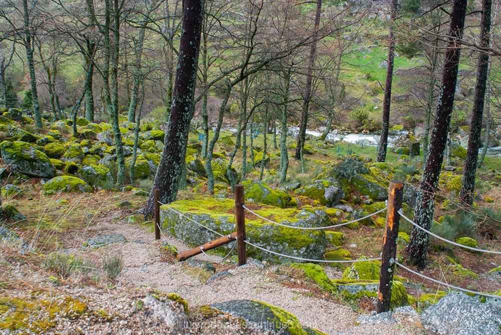 Path Serra da Estrela