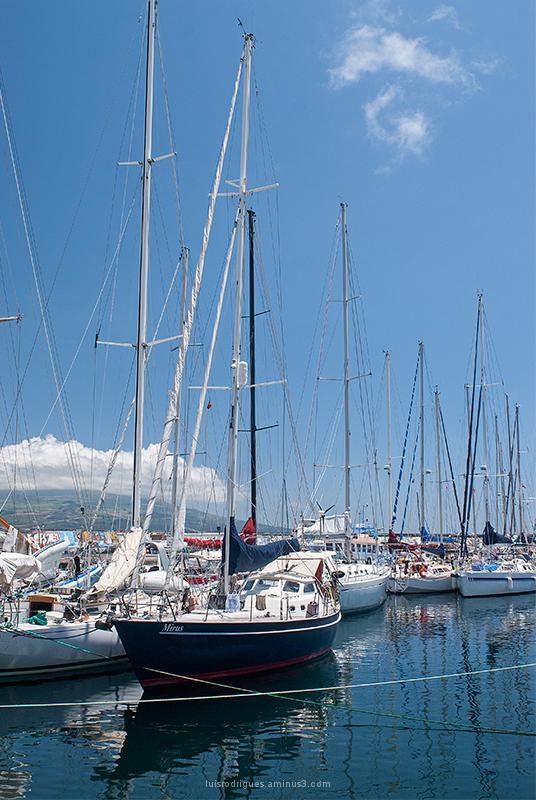 Marina Faial Azores Açores Portugal Harbor