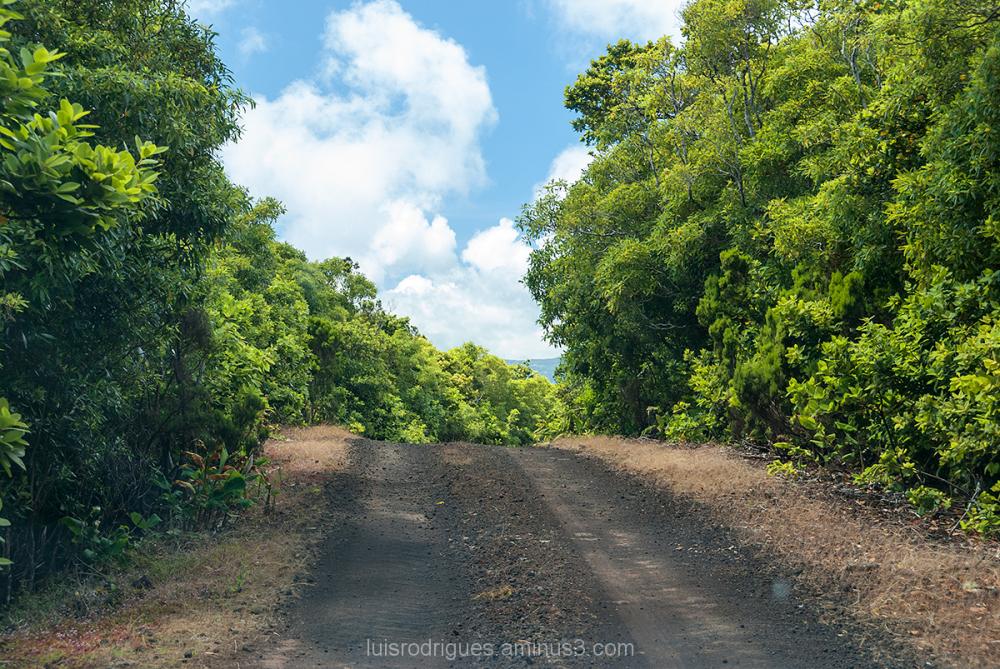Pico Island Azores Portugal Roads