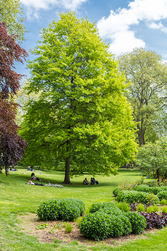 London Parks St James