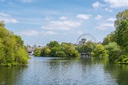 London Wheel Painting
