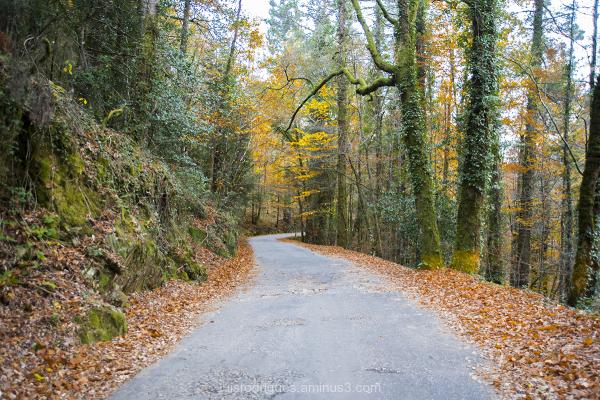 Gerês National Park Portugal