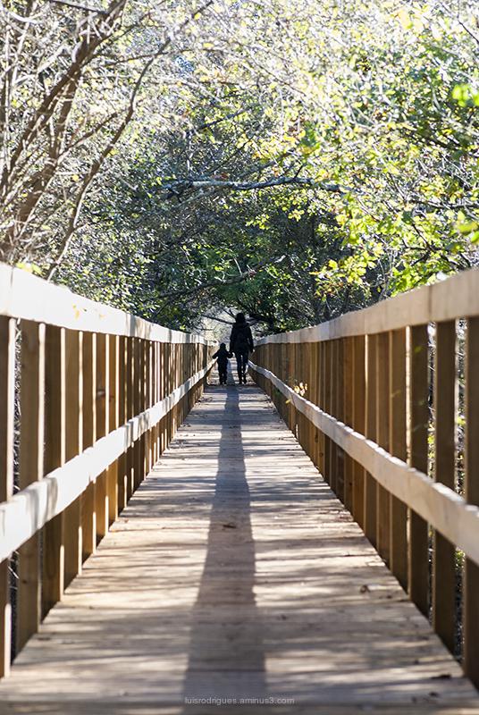 Ponte de Lima Lagoas