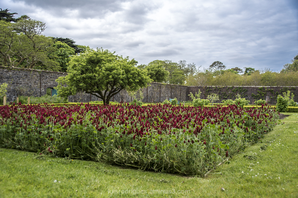 kylemore abbey Ireland Connemara Gardens