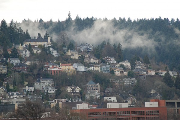 Fog on a Portland Hillside