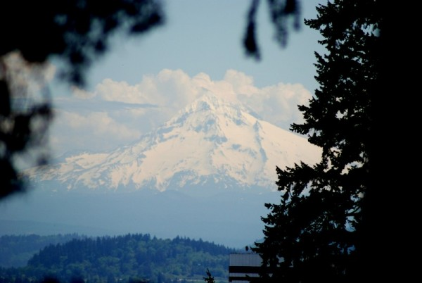 Mount Hood Portland Oregon Washington Park