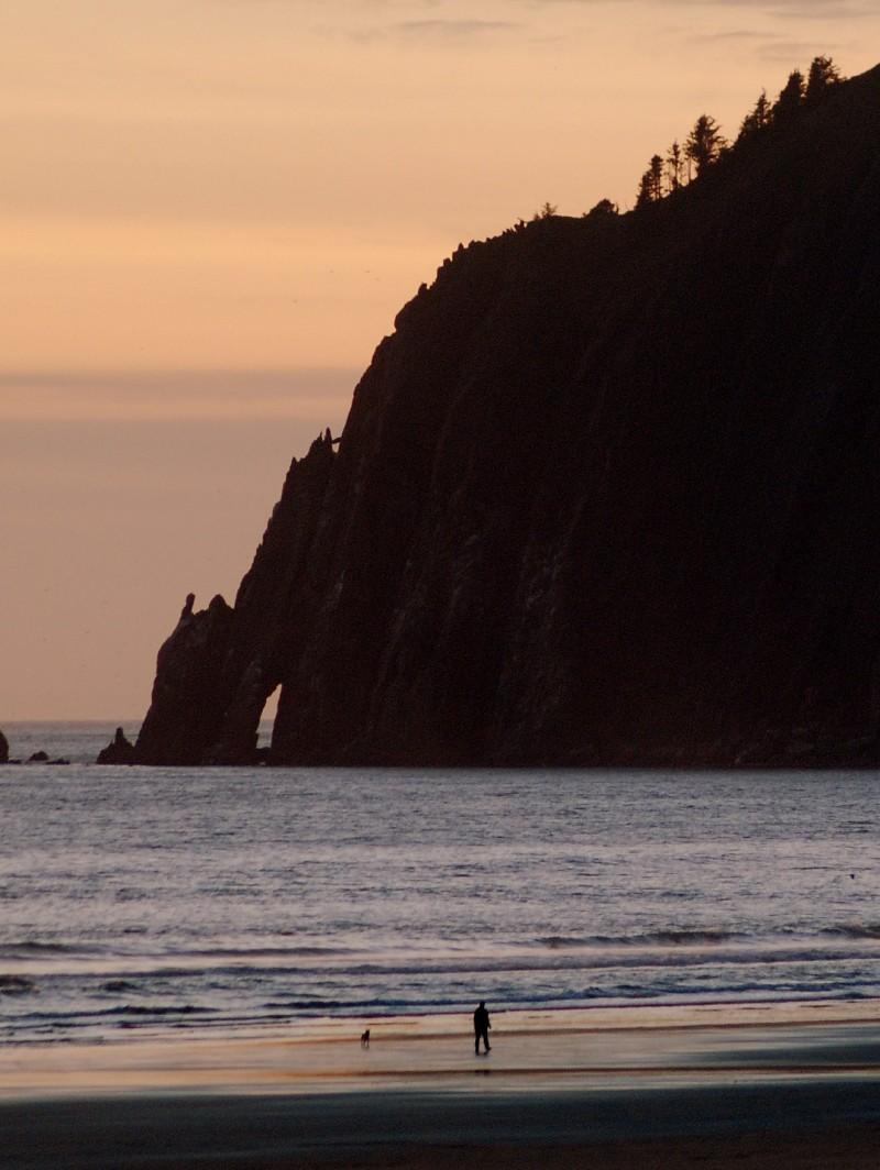 Oregon Coast Dog Manzanita ocean Beach