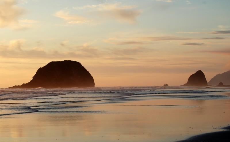 Haystack Rock Oregon Beach Coast Cannon