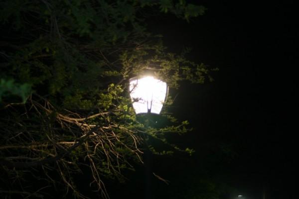 More Light...