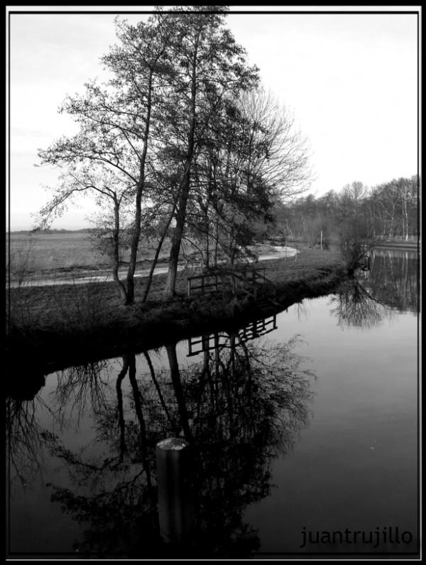 Reflecting II