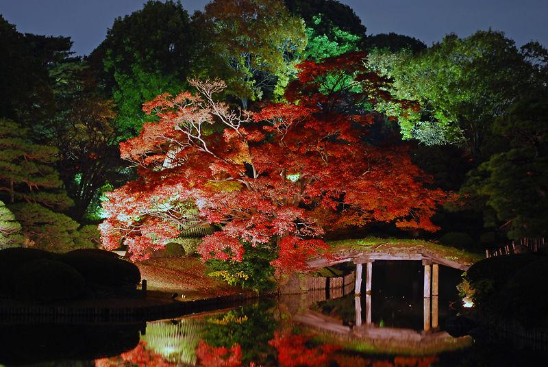 rikugi-en, japanese garden in tokyo
