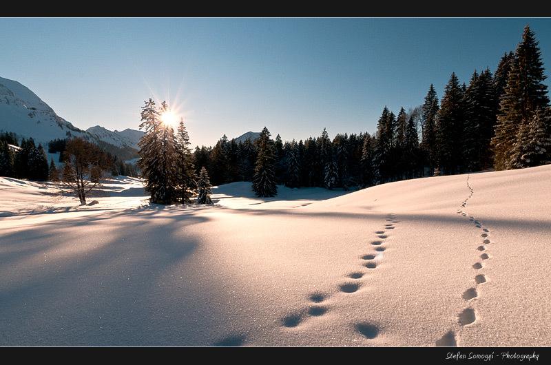 Schwaegalp, Switzerland
