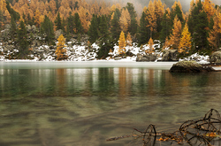 Autumn in the alps V