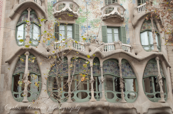 The  Genius of Gaudi