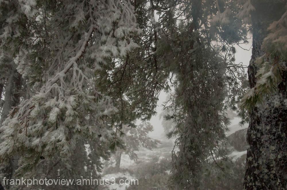 Winter in Serra da Estrela Portugal