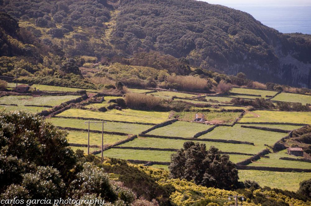 Terceira - Açores
