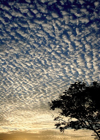 fish scale clouds rarely seen