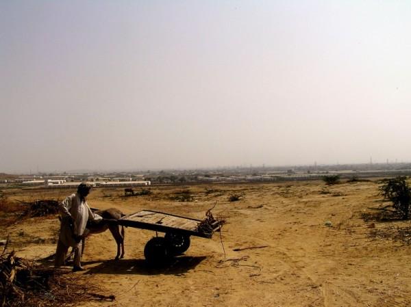 Rural Villager