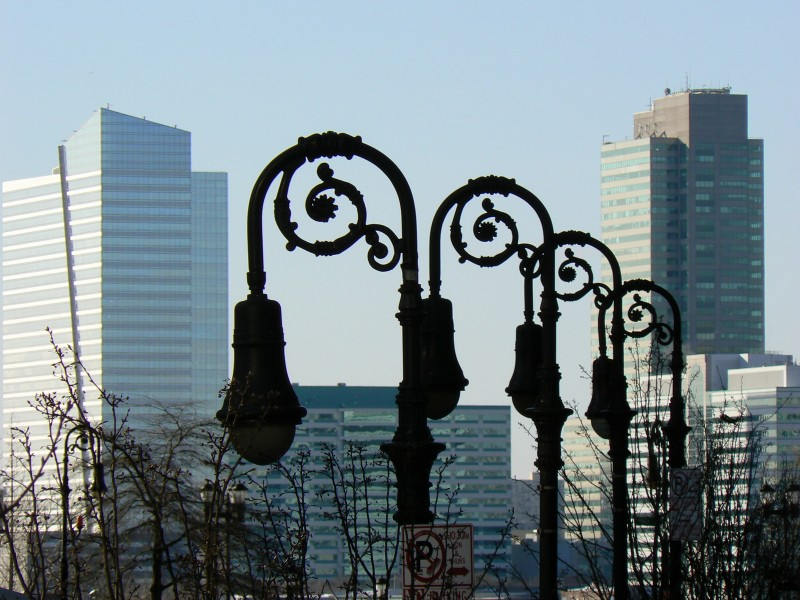 Curly lamps in front of skyscrapers.
