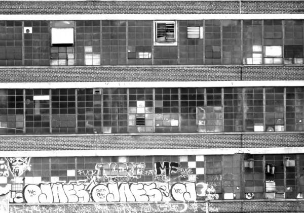 Factory windows with graffiti.
